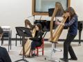 Savourna-harp-workshop